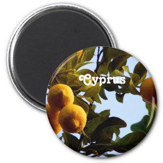 Cyprus Lemon Grove 6 Cm Round Magnet