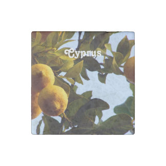 Cyprus Lemon Grove Stone Magnet