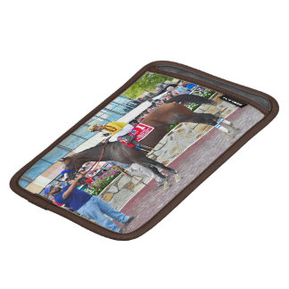 Cyrus Alexander-R.Bejarano iPad Mini Sleeves