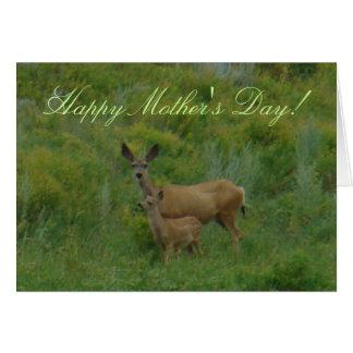 D0005 Mule Deer Doe and Fawn Card