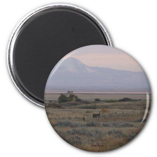 D0010 White-tailed Deer Sweet Grass Hills magnet