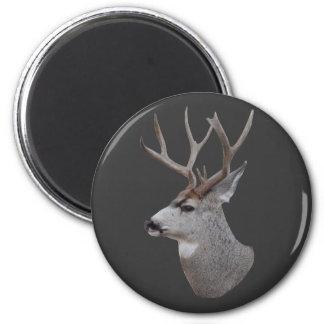 D0027 Mule Deer Buck Head 6 Cm Round Magnet
