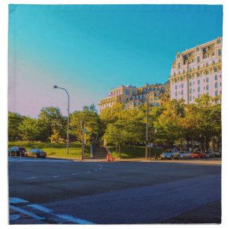 D.C. Street Napkin