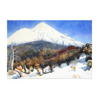 D. K. Richmond Mount Egmont Canvas Print