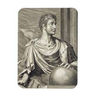 D. Octavius Augustus (63 BC - 14 AD) Emperor of Ro Vinyl Magnets