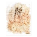 da Vinci -- Man and Horse Sketch Postcards