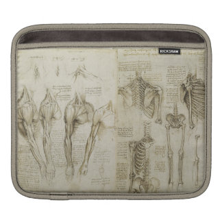 Da Vinci's Anatomy Sleeve For iPads