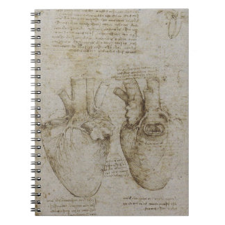 Da Vinci's Heart Anatomy Notebook