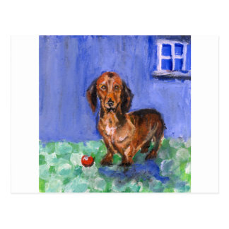 Dachshund blue room portrait postcard