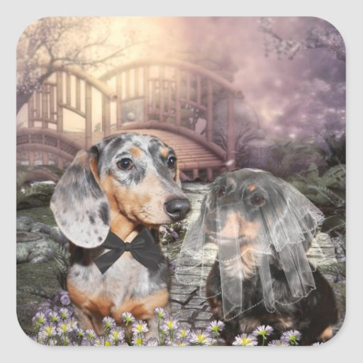 Dachshund bride and groom stickers