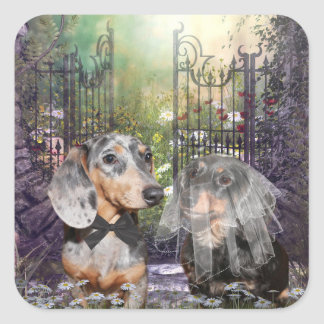 Dachshund bride and groom square stickers