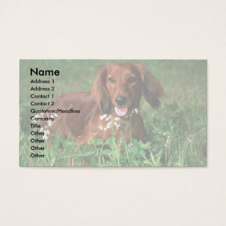 Dachshund Business Card