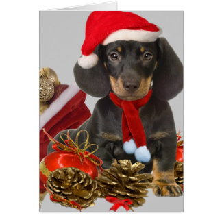 Dachshund christmas and ornaments greeting card