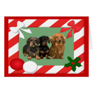 Dachshund Christmas Card Frame