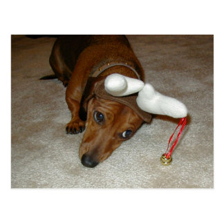 Dachshund Christmas Post Card