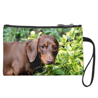 Dachshund clutch bag wristlet purses