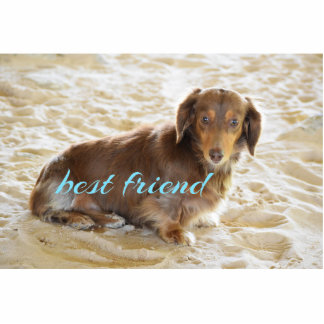 Dachshund dog acrylic photo statuettes key chain photo sculpture key ring
