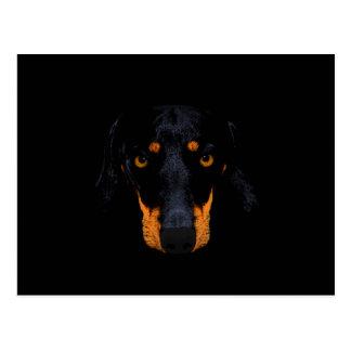 Dachshund Dog Face In Black Postcard