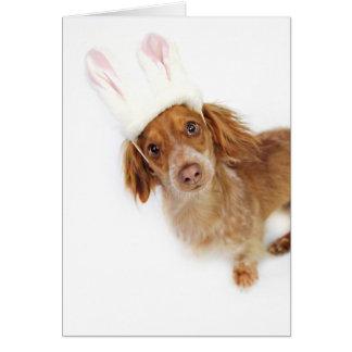 Dachshund Easter Card