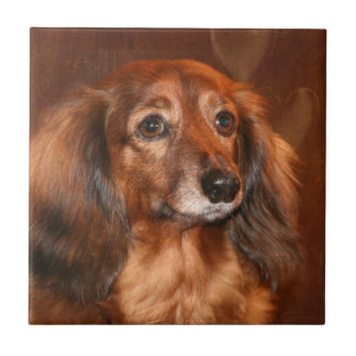 Dachshund face tile