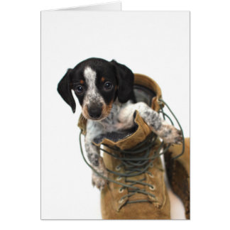 Dachshund in boots card