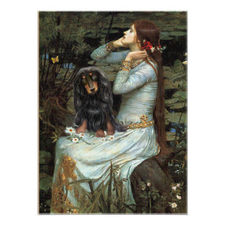 Dachshund (long haired BT) - Ophelia Seated Poster