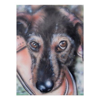 Dachshund map badger dog sow legend Dogs Poster