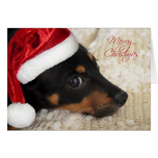 Dachshund Merry Christmas Card