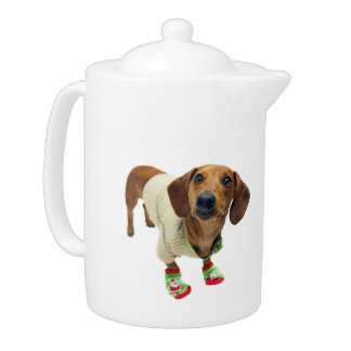 Dachshund - merry christmas - cute dog