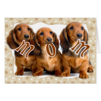 DACHSHUND MOM CARD