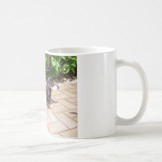 Dachshund Classic White Coffee Mug