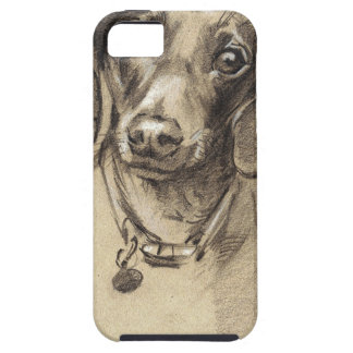 Dachshund portrait iPhone 5 cover