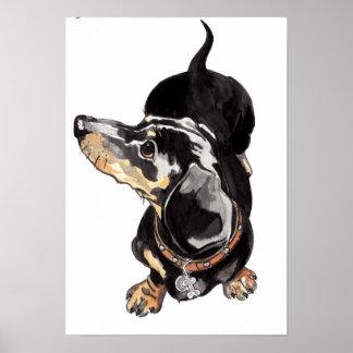 dachshund poster