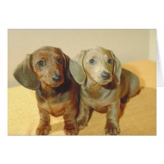 Dachshund Puppies Card