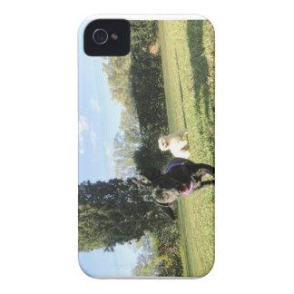 Dachshund running blackberry cover iPhone 4 Case-Mate case