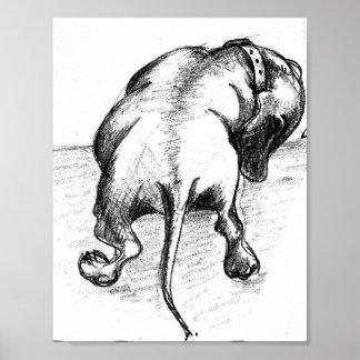 Dachshund sketch poster