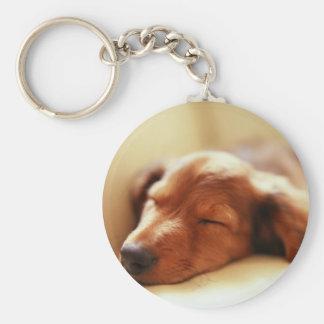 Dachshund sleeping basic round button key ring