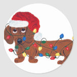 Dachshund Tangled In Christmas Lights (Red) Round Sticker