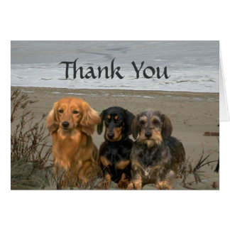 Dachshund Thank You Card Beach