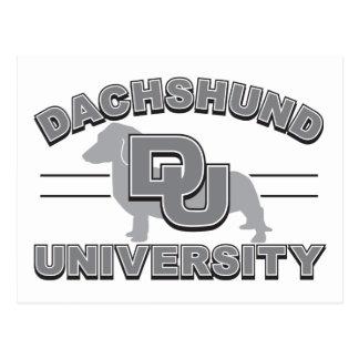Dachshund University Postcard