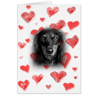 Dachshund with Red Hearts Card