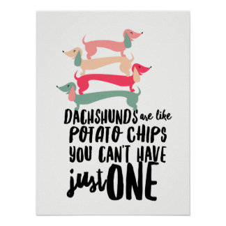 Dachshunds are like Potato Chips Poster