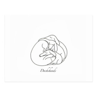 Dachshunds 'Curled Together'.jpg Postcard