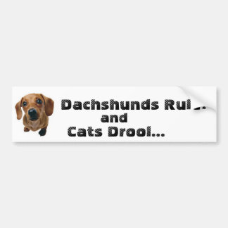 Dachshunds Rule and Cats Drool Bumper Stickers