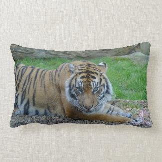 Dad's Tiger Lumbar Cushion