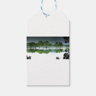 daechung asian nature elements gift tags