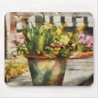 Daffodil - A pot of daffodil s Mousepads