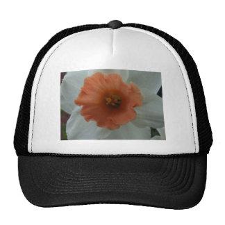 Daffodil Cap