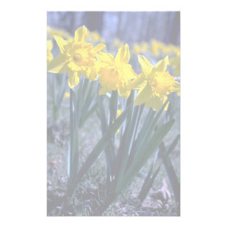 Daffodil cluster stationery design