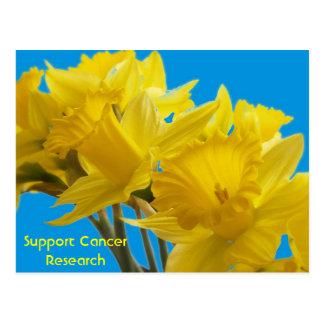 Daffodil Days Postcards